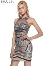 2014 Shail K Silver Homecoming Dress 3482