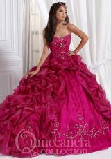 Tiffany Quinceanera 26646.  Available in Emerald/Black, Fuchsia/Fuchsia, Grape/Black, Ivory/Ivory, Orange/Garnet, Silver/White, Turquoise/Turquoise