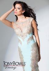 Evenings by Mon Cheri Dress TBE11513