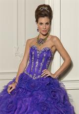 Vizcaya 88011.  Available in Bright Purple