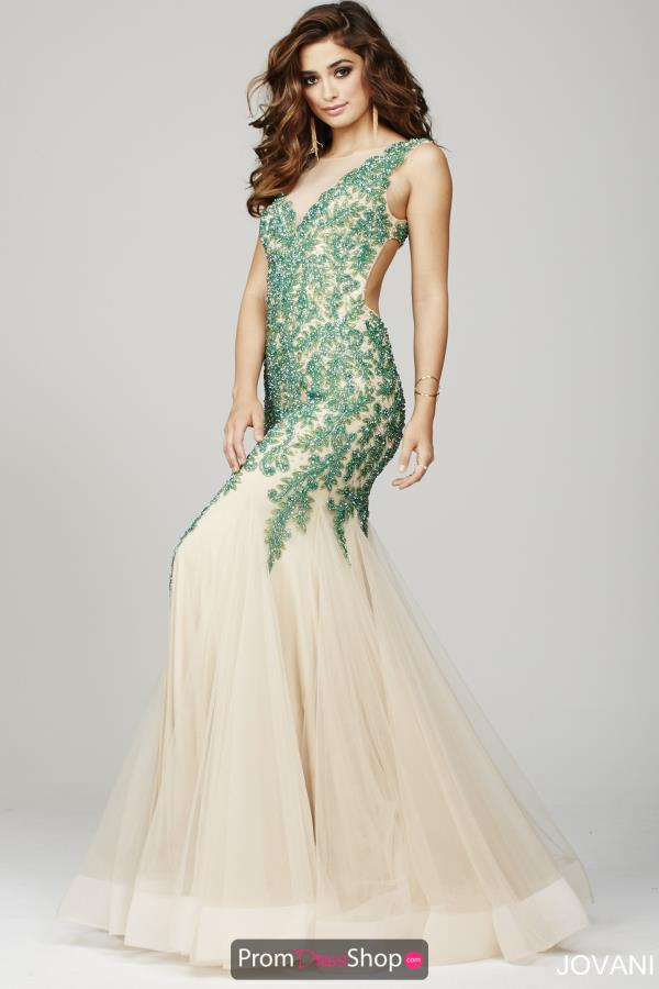 Long High Neckline Jovani Dress 36508