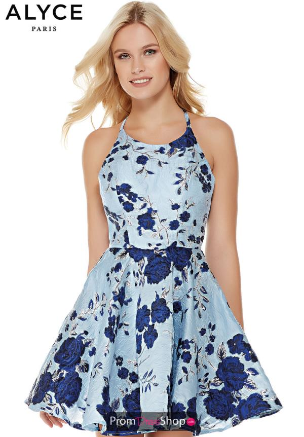 Alyce Paris Print A Line Dress 3774