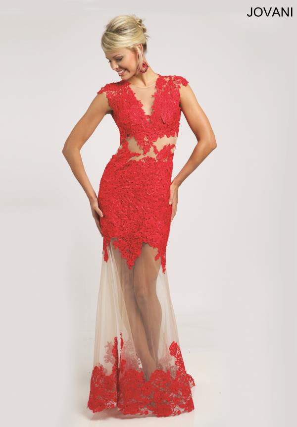 Jovani Sleeved Applique Dress 20903