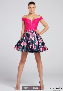 Ellie Wilde Dress EW117092