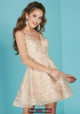 Tiffany Dress 27257
