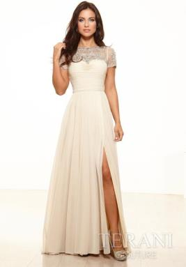 Terani Evenings Dress M2218